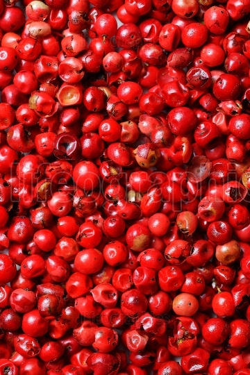 Pink peppercorns seeds as background