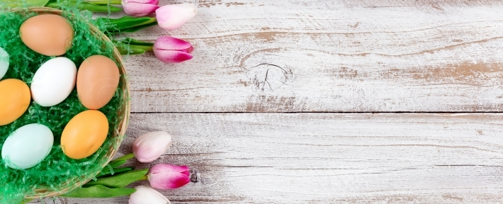 Pink Tulips and real eggs for Easter on rustic white wooden back