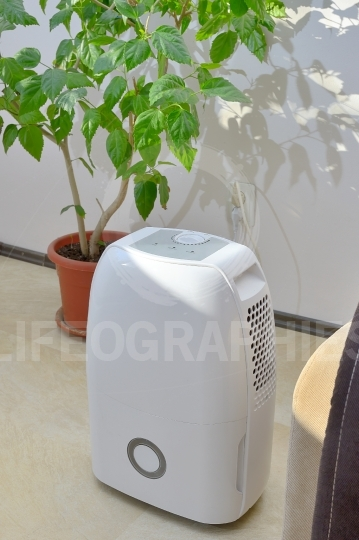 Portable dehumidifier colect water from air