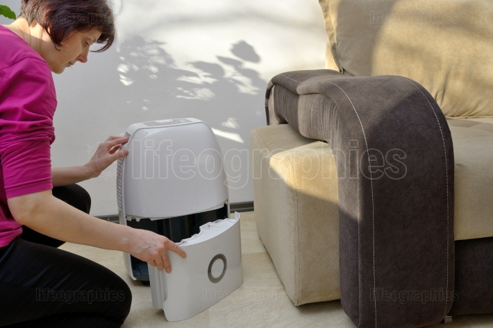 Portable dehumidifier collect water from air