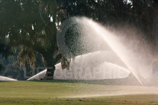 Powerful Spinklers Soak A Golf Course Fairway