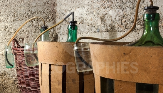 Process of a fermentation of wine in demijohn wine