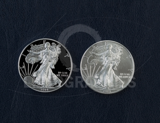 Proof and Uncirculated American Silver Eagle Dollar Coins