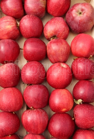 Red apple fruits for sale,