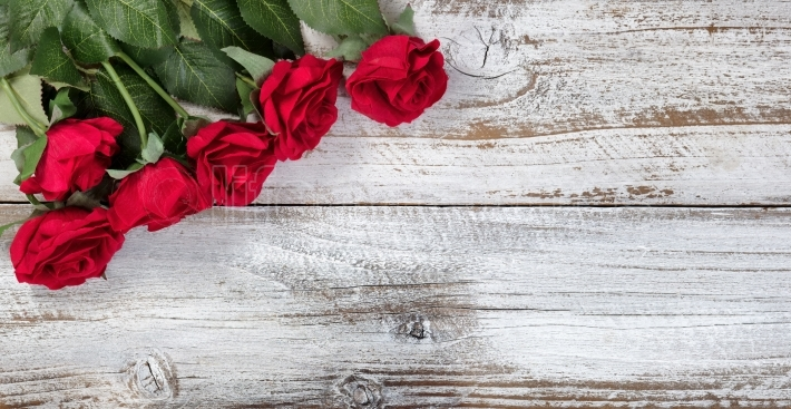 Red roses on rustic white wood