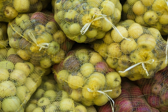 Ripe apples for industry in a mesh bags