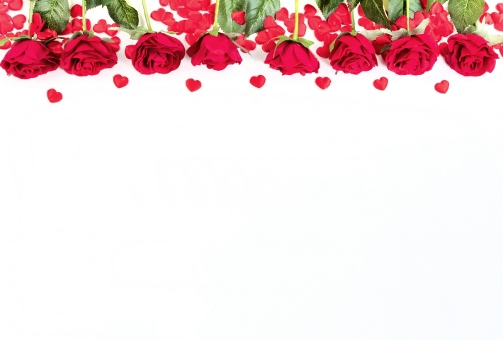 Roses and hearts on white background