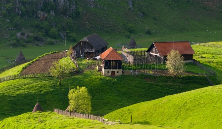 Rural landscape with house in summer sunrise light somewhere in Transylvania Romania