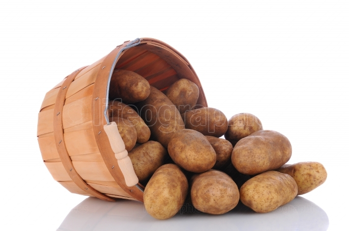 Russet Potatoes spill from Basket