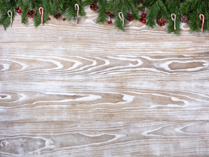 Rustic white wooden boards with fir branches for Christmas seaso