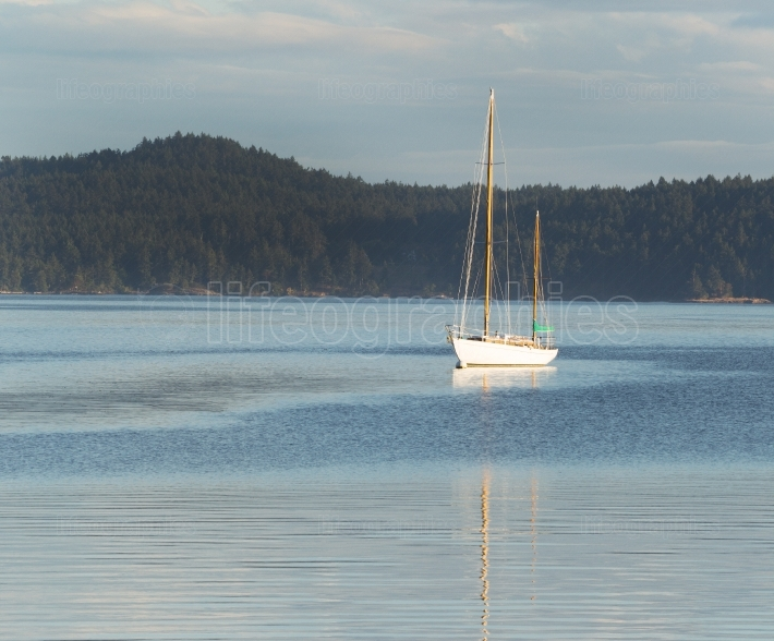 Sailboat Docked in the Water