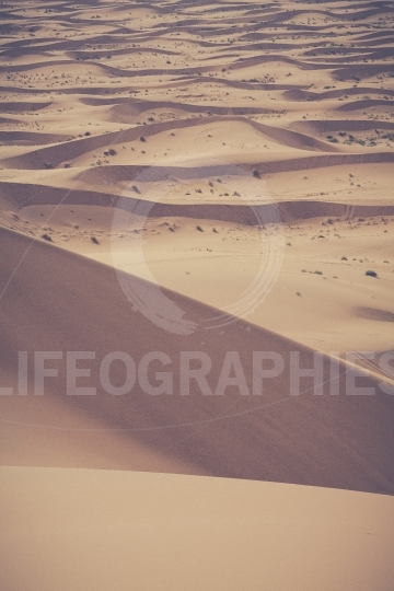 Sand dunes in the sahara desert, morocco