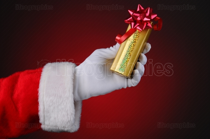 Santa Claus Hand Holding Present
