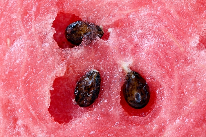 Seeds of a fresh watermelon .