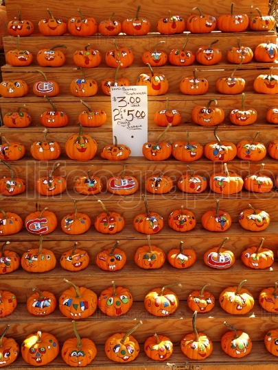 Selection of painted pumpkins