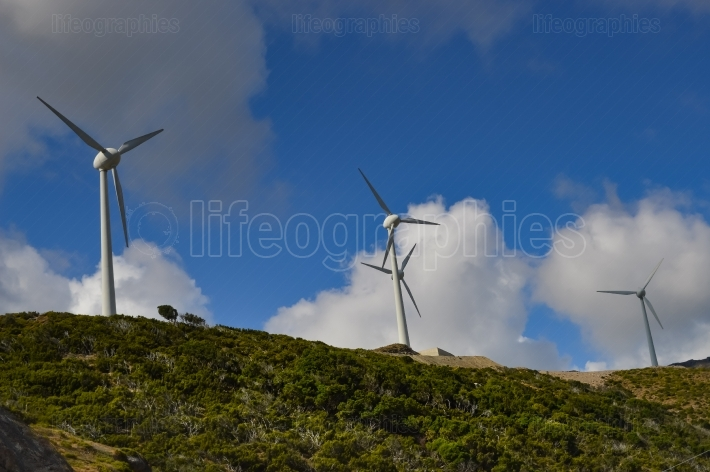 Several wind turbines with gray