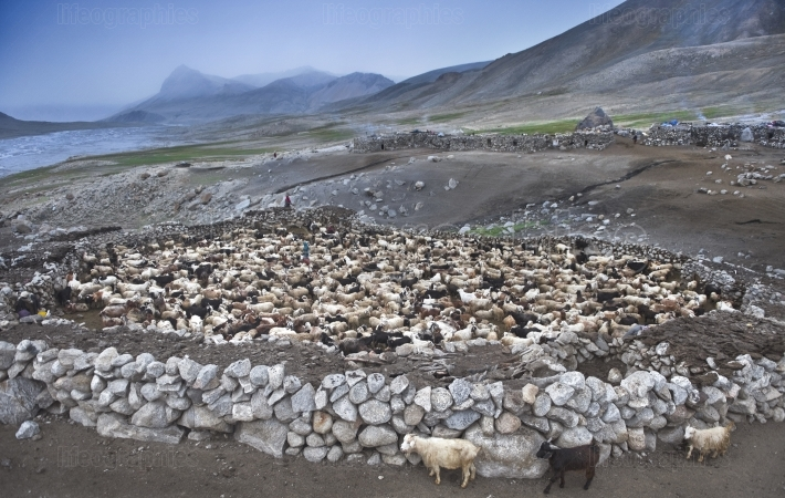 Sheeps pen from upper shimshal village