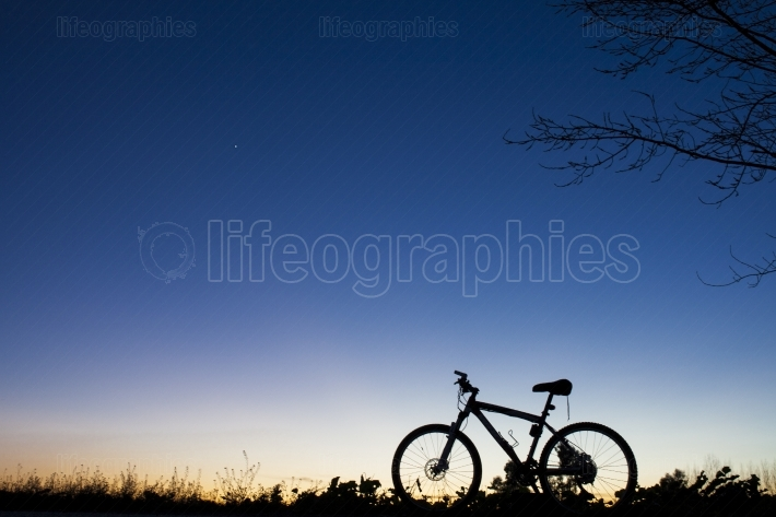 Silhouette of Mountain bike at sunset under tree on blue sky