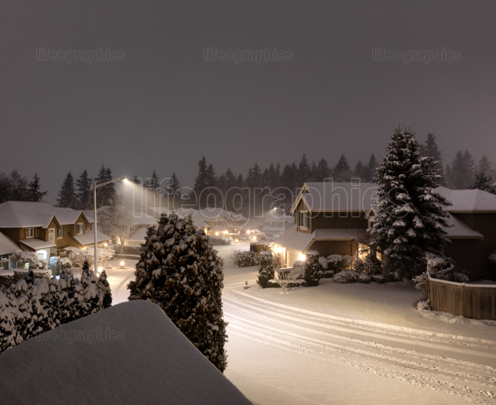 Snow storm in the pacific Northwest of United States