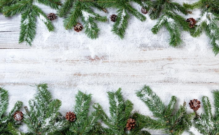 Snowy Christmas branches on rustic white wooden background