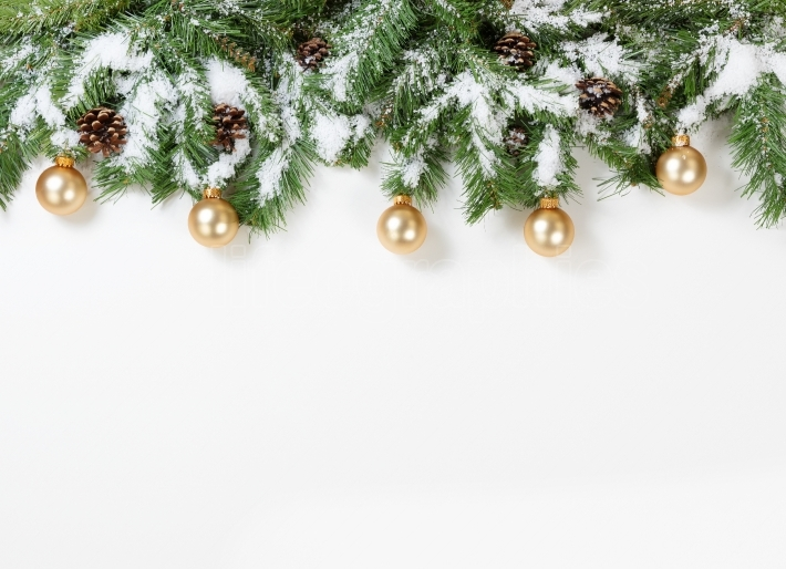 Snowy Christmas gold ornaments hanging in fir tree branches