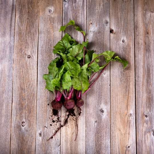 Soiled fresh harvested beets on rustic wooden boards