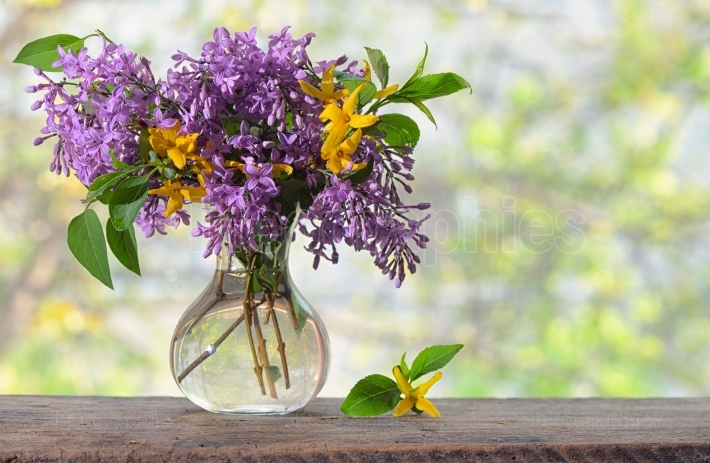 Spring Lilac flowers bouquet