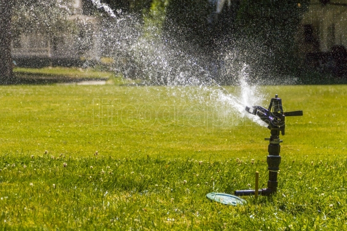 Sprinker spraying water on lush green grass in park