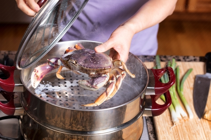 Steaming fresh live Crab