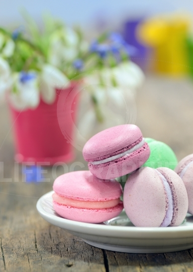 Still life with macaroons and spring flowers