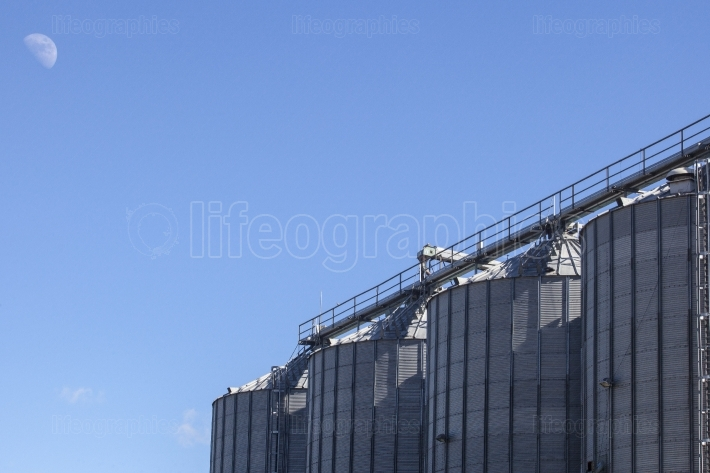 Storage tanks for cereals products
