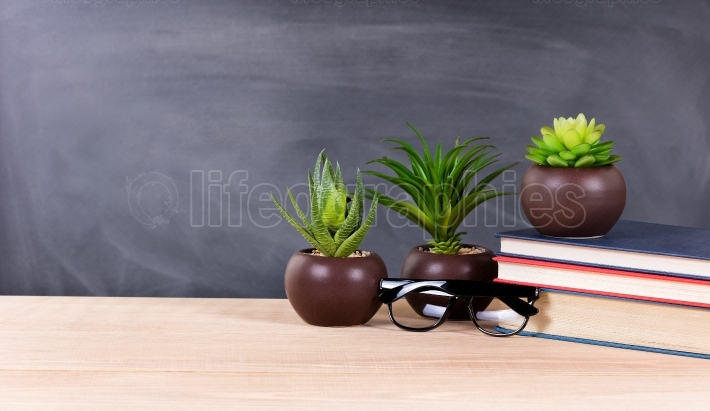 Student desktop with green plants and books with blank blackboar