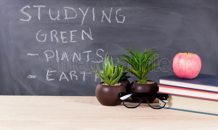 Studying green topics in classroom environment with blackboard i