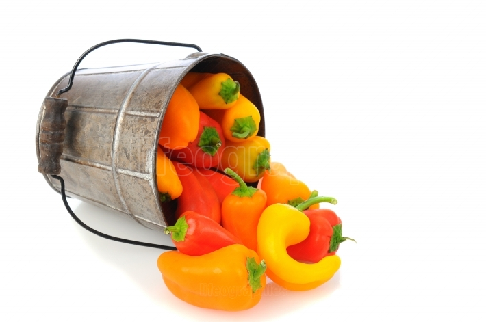 Sweet Peppers Spilling from Bucket