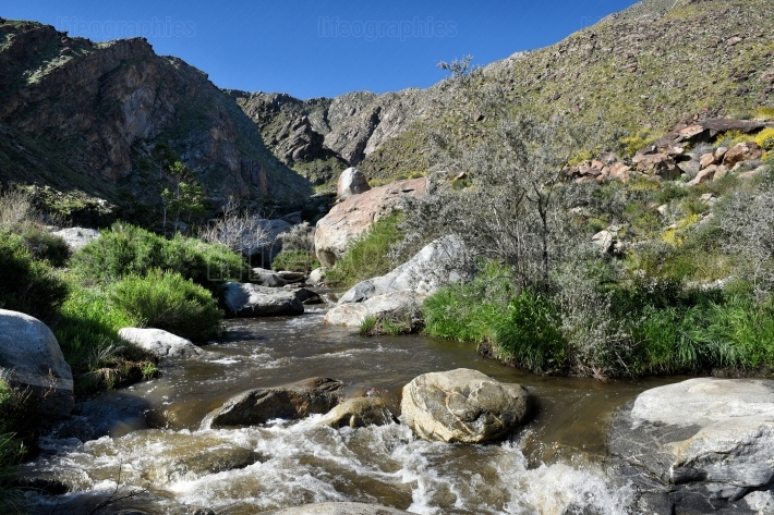 Tahquitz Canyon Creek