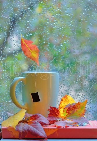 Tea cup at the window with  leaves and drops