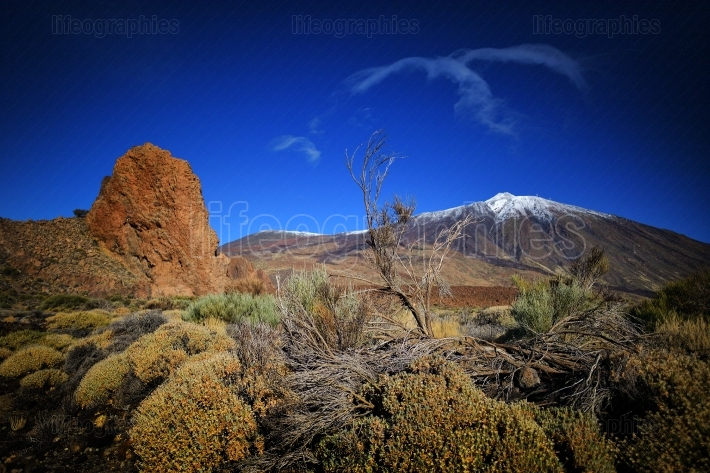 Teide national park roques de garcia in tenerife, canary islands