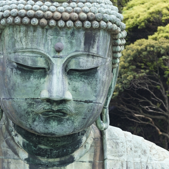 The great buddha (daibutsu) on the grounds of kotokuin temple in