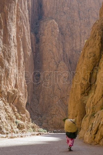 Todra Gorge carrier, Morocco
