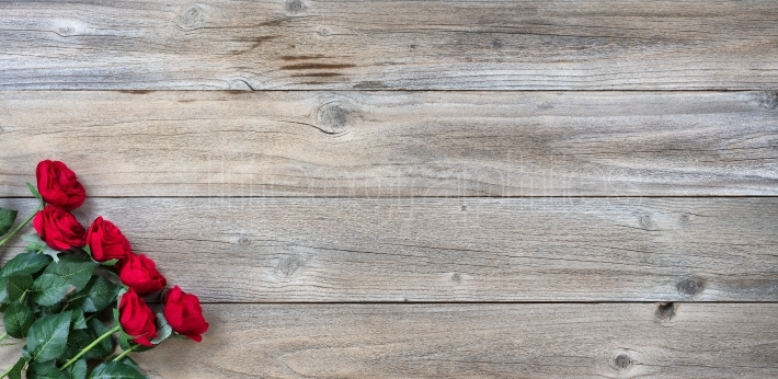 Traditional red roses on rustic wooden background