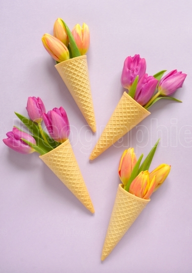 Tulips in wafer ice cream cone