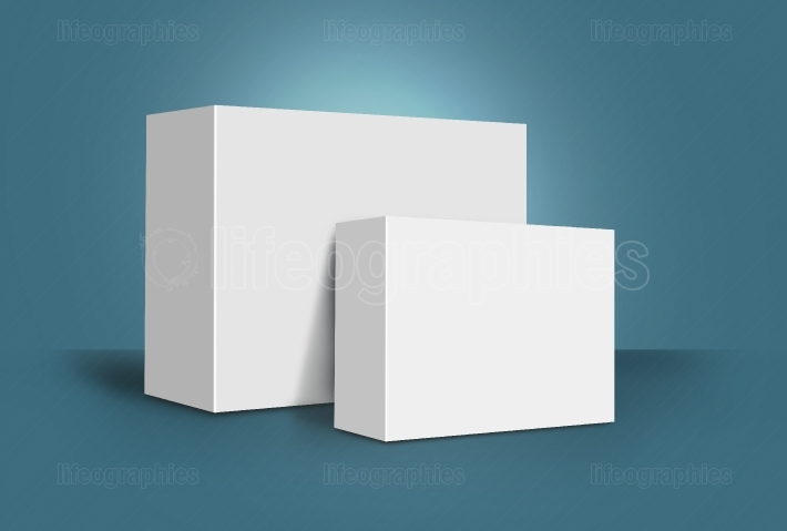 Two 3D White Boxes on Ground