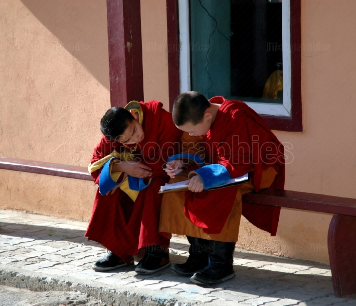Two Monks Studying