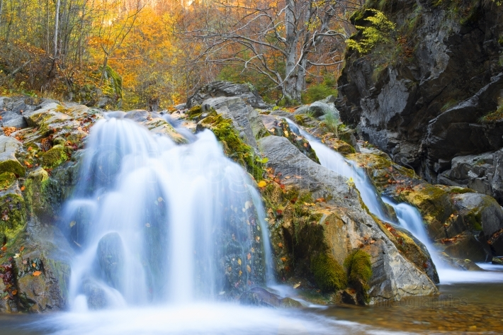 Waterfall in autumn season