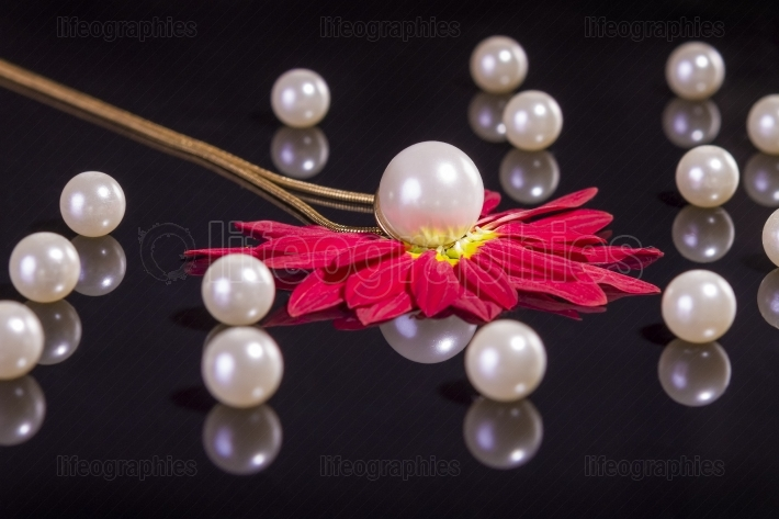 White pearls necklace on black background