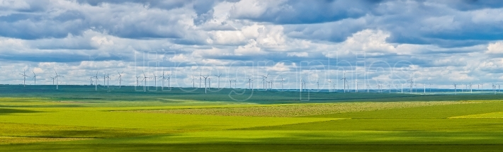 Wind turbines farm in the fields