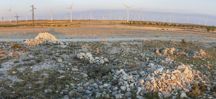 Wind turbines on arid landscape