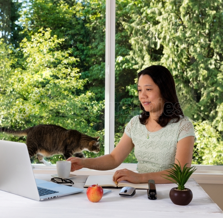 Woman working at home with daylight window and cat behind her