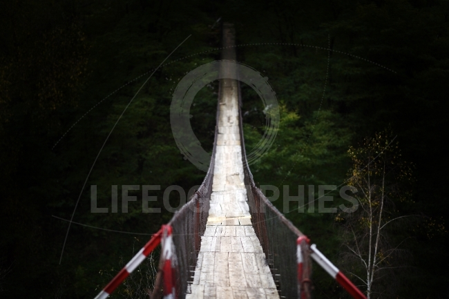 Wooden bridge in alpin zone