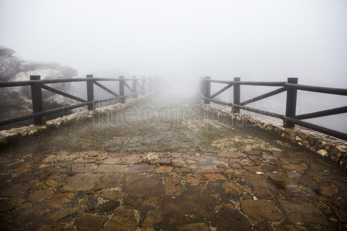 Wooden walkway lost in the fog